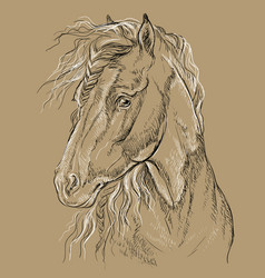 Horse portrait-13 on brown background vector