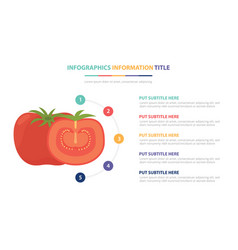 tomato infographic template concept with five vector image