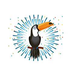 Toucan bird icon vector