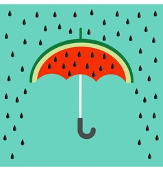 Big watermelon slice cut with seed Umbrella and vector image vector image