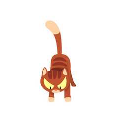 Angry brown striped cat cartoon character vector