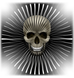 background with skull and circular volume texture vector image