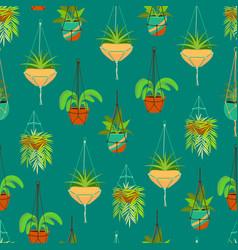 Cartoon color macrame hangers for home plants vector