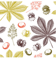 Decorative chestnut pattern vector