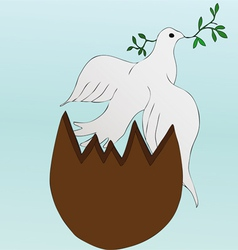Easter dove vector image