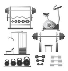 fitness workout equipment training apparatuses vector image