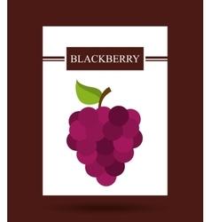 fresh fruits menu healthy vector image