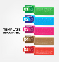 infographic template for presentation and business vector image