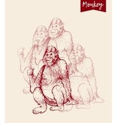 Monkey sketch engraving vector