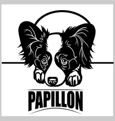 Papillon - for t-shirt logo vector