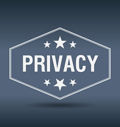 Privacy hexagonal white vintage retro style label vector