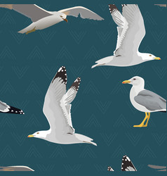 Sea gulls seamless pattern hovering soaring vector