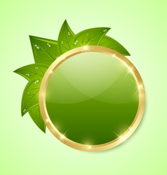 Golden and green plaque vector image vector image