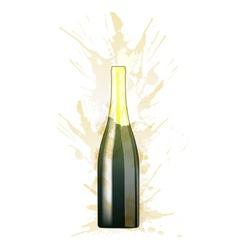 bottle sparkling wine made colorful splashes vector image