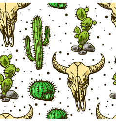 Cactus and skull of bull vector