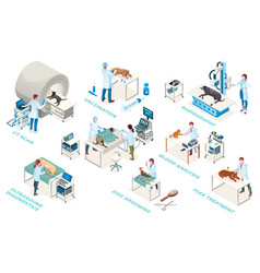 isometric veterinarian clinic veterinary medicine vector image