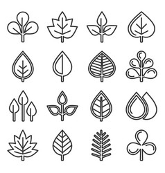 leaf icons set on white background line style vector image