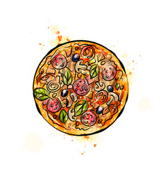 pizza from a splash watercolor hand drawn vector image