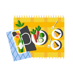 summer picnic food on blanket outdoor activity or vector image