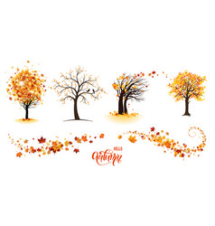 trees and leaves vector image