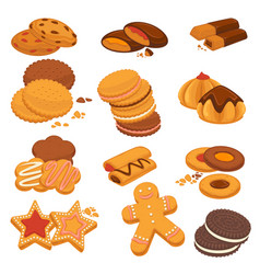 chocolate cookies and gingerbread biscuits vector image