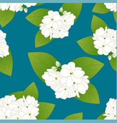 arabian jasmine on indigo blue background vector image vector image