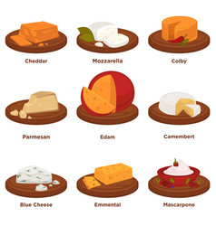 Delicious exquisite cheeses on round wooden treys vector
