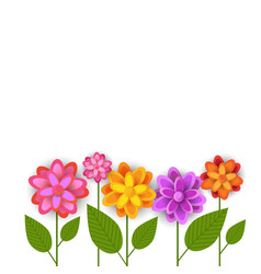 floral spring white background colorful flowers on vector image