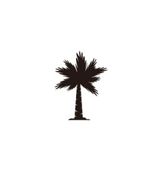 palm tree logo designs inspiration isolated on vector image