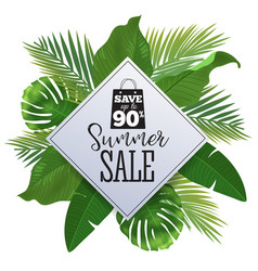Sale banner poster with palm leaves jungle leaf vector