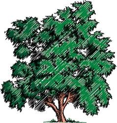 Sketch of a tree vector image