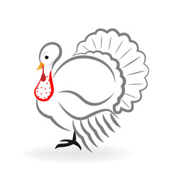 turkey animal vector image