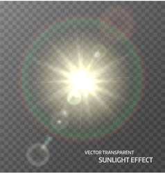 Sun sunlight with rays and lens flare lights vector image vector image