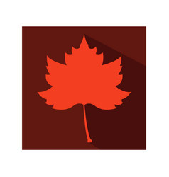 autumn leaf icon vector image