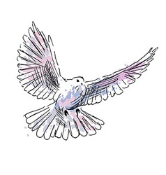 Colored hand drawing dove vector