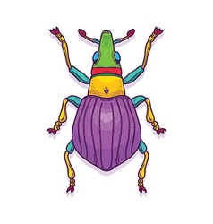 Colorful Beetle Bug Insect vector