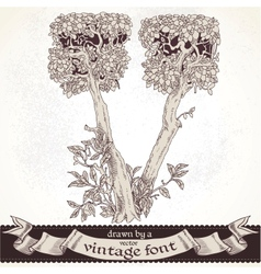 Fable forest hand drawn a vintage font - v vector