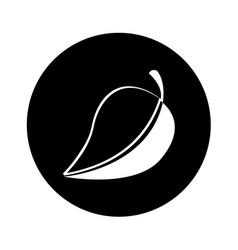 Leaf plant ecology symbol vector