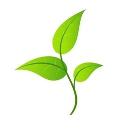 Leaf single icon vector