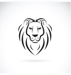 lion head design on white background wild vector image