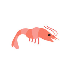 shrimp graphic design template isolated vector image