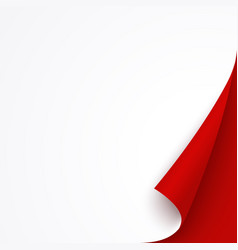 white banner template with red curled corner vector image