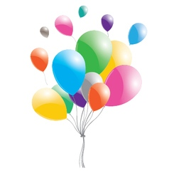 Multicolored balloons on a white background vector image vector image