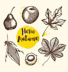 vintage autumn plants vector image vector image