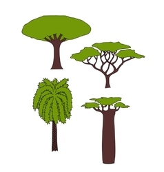 african trees vector image