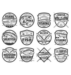 fishing rods fish and hooks fisherman club vector image