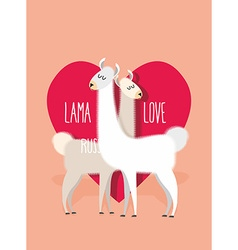 Lama love Two Llama Alpaca on ackground of heart vector image