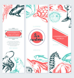 Sea creatures - color drawn template banner vector