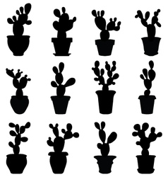 Silhouettes cactus vector