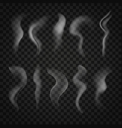 trickles of smoke set isolated on transparent vector image